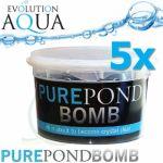 Pure Pond BOMB 5x, čistící a startovací bakterie pro bio-rovnováhu v jezírku, použitelné po celý rok,  aplikace od 4 °C vody v jezírku, 5 ks pro 50-400 m3